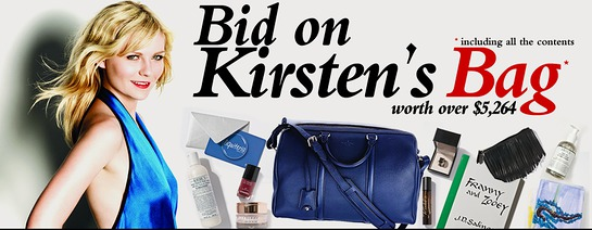 Bid on Kirsten's Bag