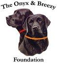 Onyx and Breezy Foundation