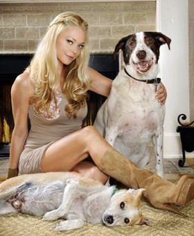 Charlotte Ross Gives Blankets Of Love To Homeless Pets