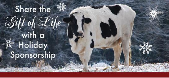 Holiday Sponsorship, Farm Sanctuary