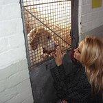 Pamela Anderson's Charity Christmas