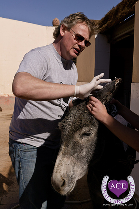 Martin helping in Luxor at the ACE hospital