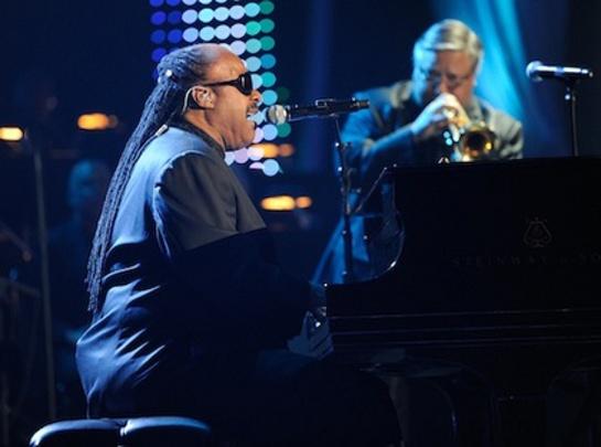 Stevie Wonder Charity Auction
