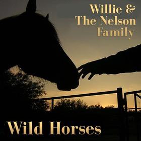 Willie Nelson Wild Horses