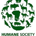 Humane Society International: Profile
