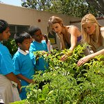 Photos: Amy Smart Attends School Gardens Luncheon