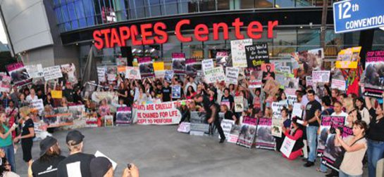 Protestors gather outside Staples Center