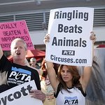 Jillian Michaels Leads Massive Protest For PETA