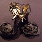 Lady Daniela Kingsley Donates Shoes To Charity