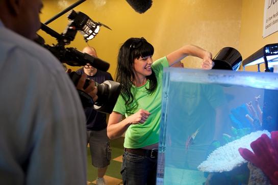Pauley Perrette drops fish into the aquarium