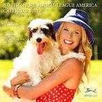 Howard Stern Photographs Wife For Animal Charity Calendar