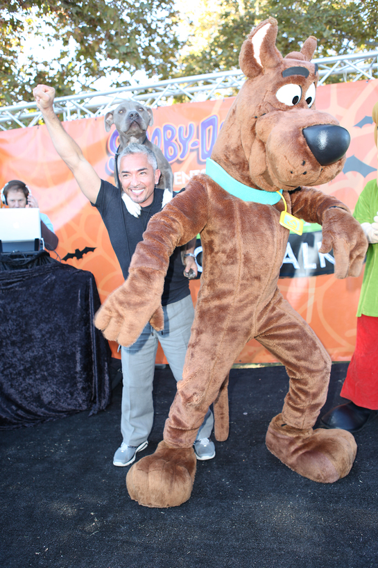 Cesar and Scooby