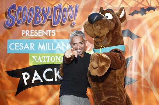 Cesar and Scooby Let The Dogs Out