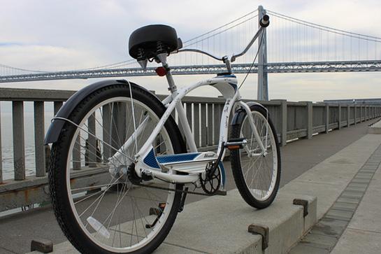 The Nature Conservancy Bike