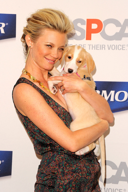 Amy Smart Helps Launch The ASPCA PetArmor Protection Promise