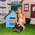 Amy Smart Backs ASPCA PetArmor Protection Promise