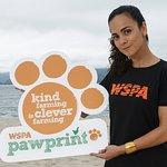 Alice Braga Backs WSPA Pawprint Campaign At Rio+20