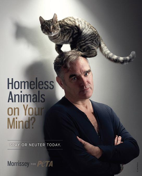 Morrissey Launches New PETA Ad
