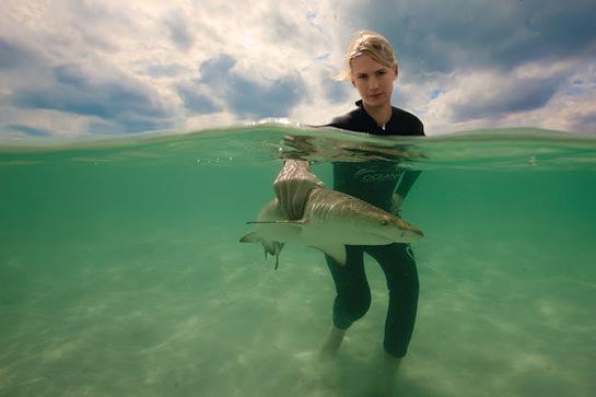 January Jones get's a hand on shark protection in the Bahamas