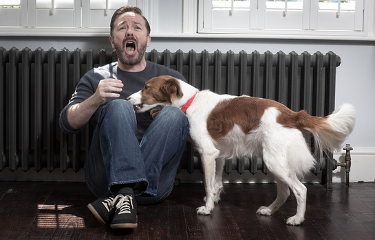 Ricky Gervais and Barney join WSPA's Red Collar Campaign