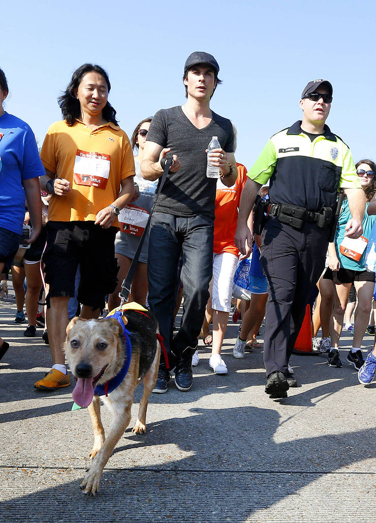 Ian Somerhalder Takes Part In Strut Your Mutt event