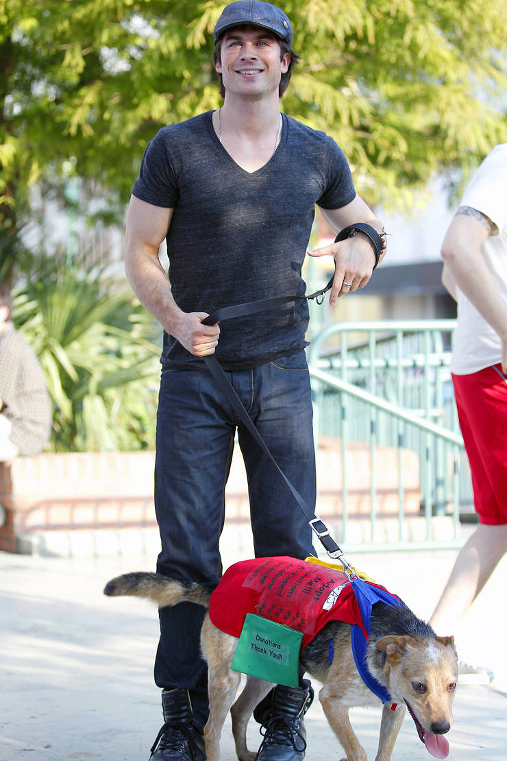 Ian Somerhalder Struts His Mutt