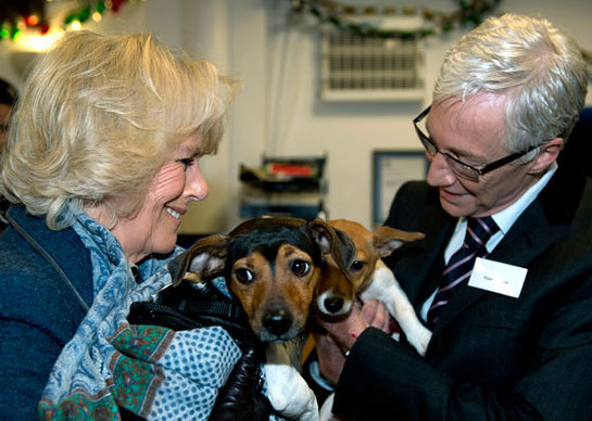 Duchess of Cornwall and Paul O'Grady at Battersea Dogs & Cats Home