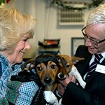Duchess Of Cornwall Visits Battersea Dogs & Cats Home