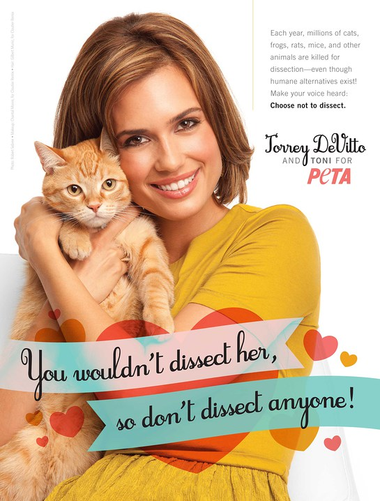 Torrey Devitto's New PETA Ad