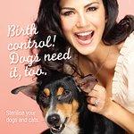 Sunny Leone: Birth Control, Dogs Need It Too