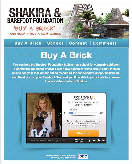 Shakira Buy-a-Brick