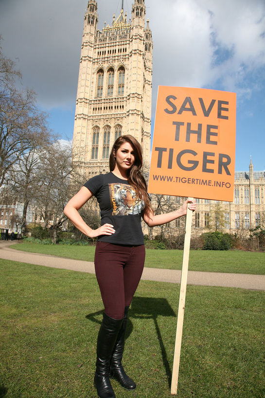 Lucy Pinder Fights For Tigers