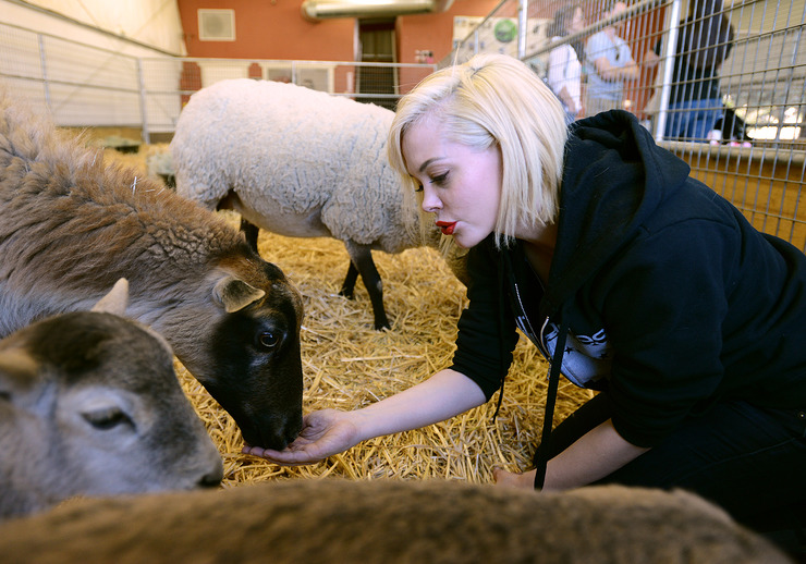 Rose McGowan Meets Sheep At The Gentle Barn