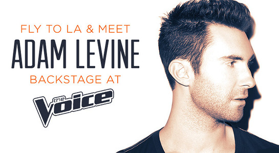 Meet Adam Levine At The Voice