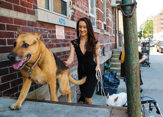 Maggie Q arrives with her dogs for a day of shooting