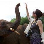 Help Kristin Davis Raise Money For Anti-Poaching Helicopter
