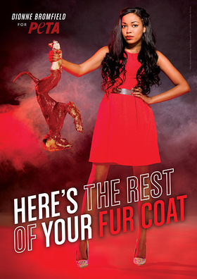Dionne Bromfield - Here's the Rest of Your Fur Coat