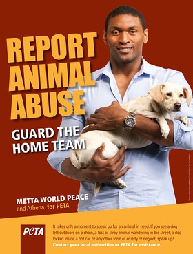 Metta World Peace - Report Animal Abuse