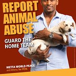 Metta World Peace - Report Animal Abuse!