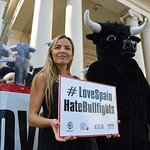 Elen Rivas Takes Bullfighting Petition To Spanish Embassy