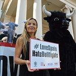 Elen Rivas Takes Bullfighting Petition To Spanish Embassy