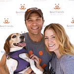 Stars Strut Their Mutts For Charity