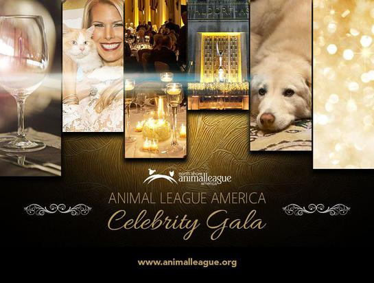 Animal League America Celebrity Gala