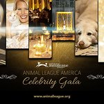 Animal League America's Celebrity Gala To Feature Natalie Maines