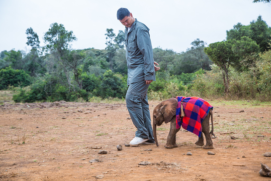 Yao Ming and an orphan elephant at the David Sheldrick Wildlife Trust.