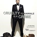 Mob City's Jon Bernthal Gets Tough On Animal Cruelty