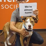 Moby Speaks Up For Shelter Pets
