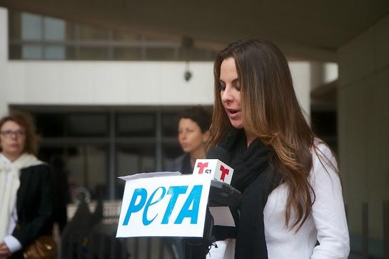 Kate del Castillo Unveils PETA PSA