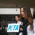 Kate Del Castillo Says No To The Circus