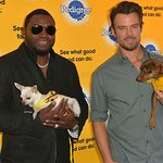 Josh Duhamel And David Ortiz Team Up To Help Shelter Dogs By Launching New Storytelling Campaign